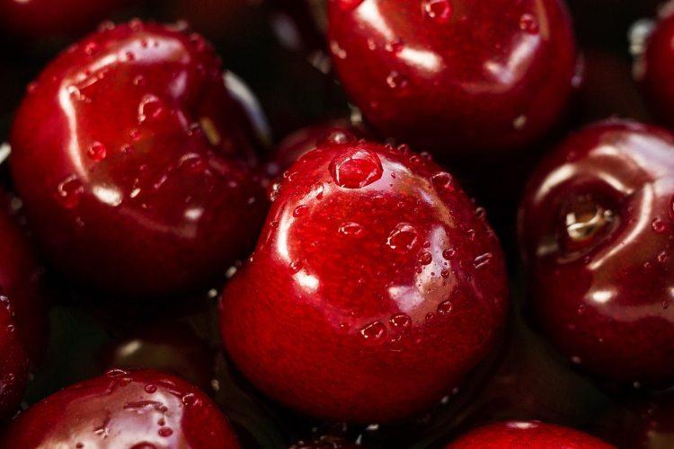 fruit cherries new