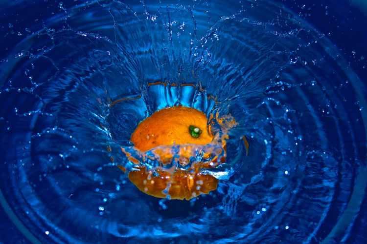 fruit orange in water
