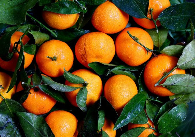 fruit oranges new