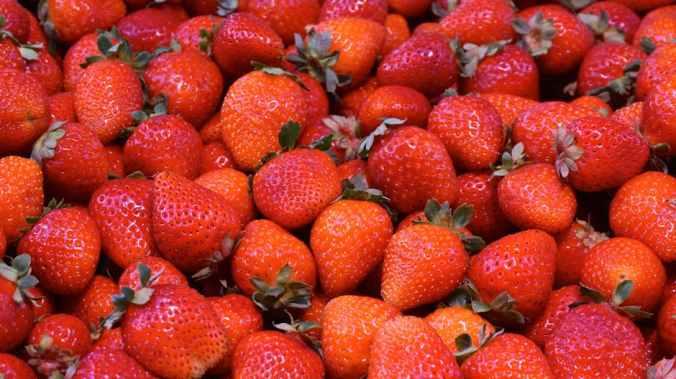 fruit strawberries new