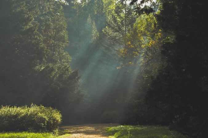 path walk